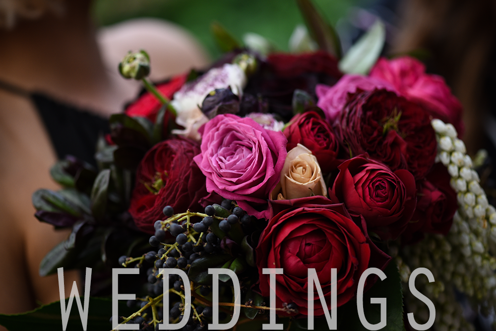 Wedding Header 03.png