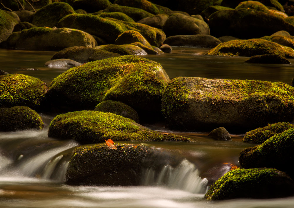 dreamy water & rocks2.jpg