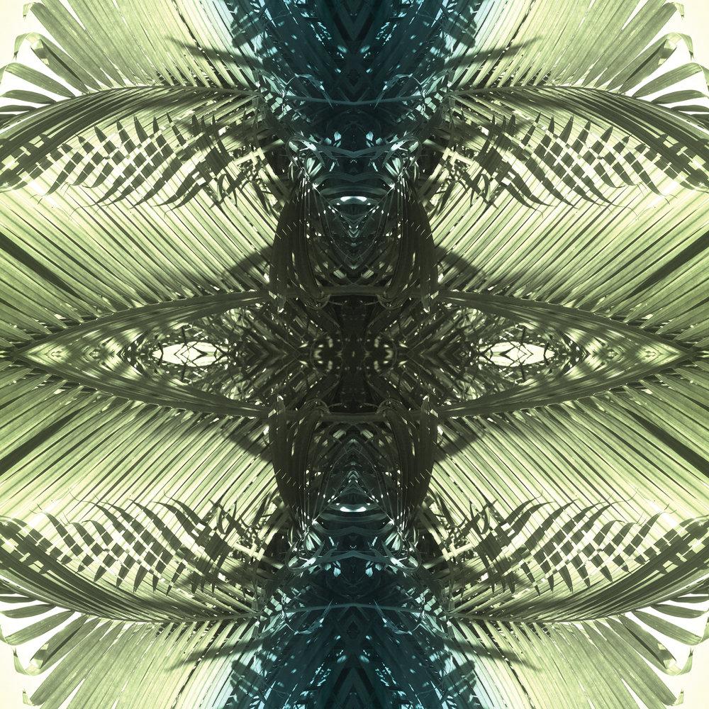Green Palms 2 | Giclee Print by Stephanie Mill Artist | www.stephaniemill.com.jpg