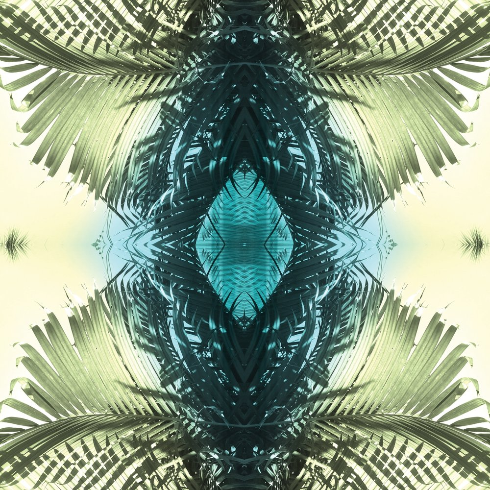 Green Palms 1 | Giclee Print by Stephanie Mill Artist | www.stephaniemill.com.jpg