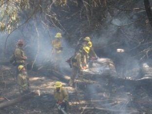vnc fire crew pic1.jpg