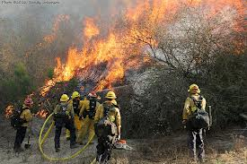 vnc fire crew pic4.jpg