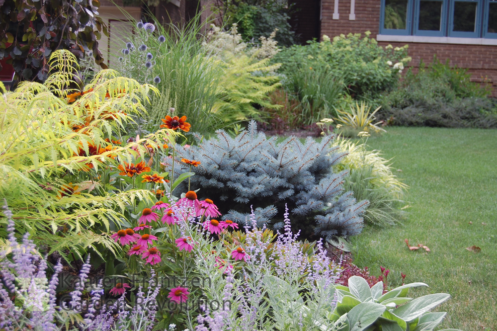 Composition of mainly foliage trees, shrubs, grasses and perennials with just a few flowering perennials.