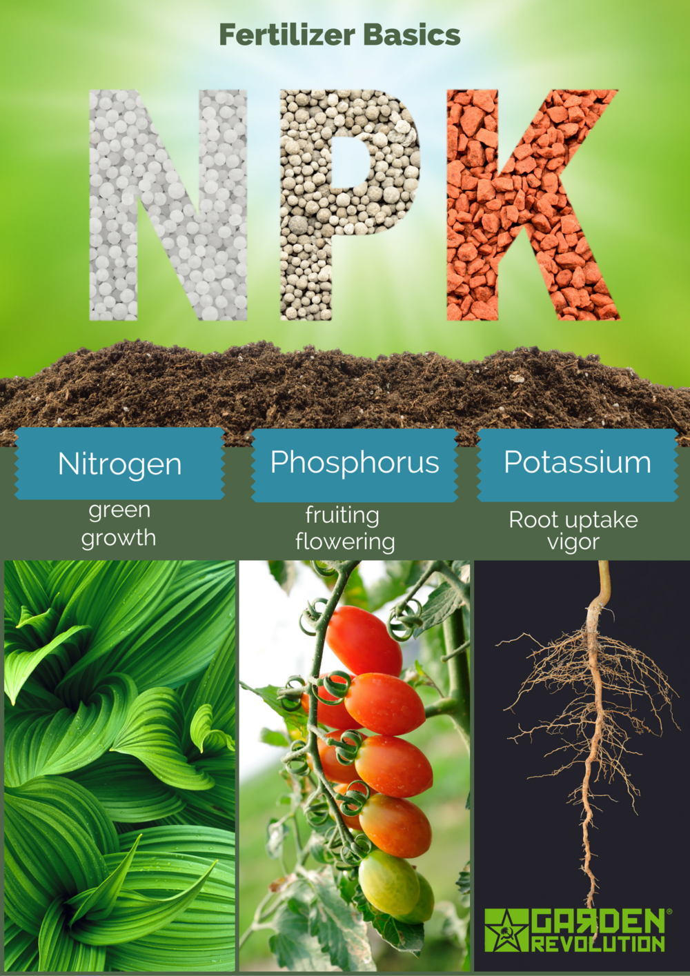 """101 lesson on """"Just What those Letters Mean"""" on the fertilizer containers and what they can do for your plants. 1st number is N; 2nd number is P; 3rd number is K; The number refers to percentage by weight. It is important to know the requirements of the plant before fertilizing."""