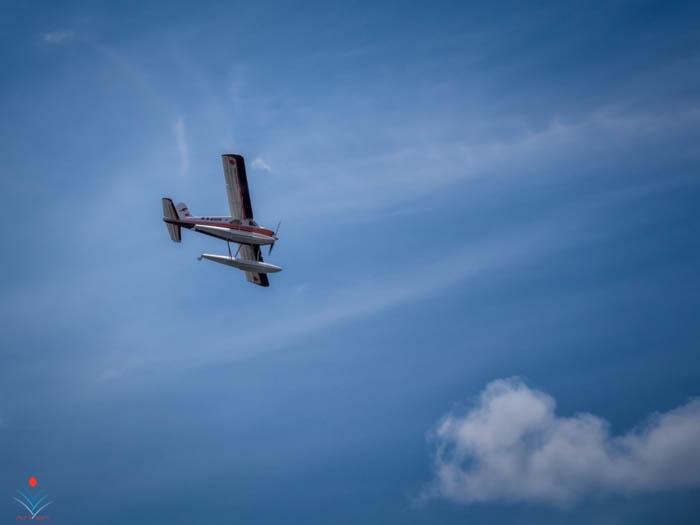 de Haviland Beaver Fly-By.jpg