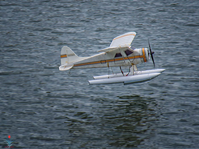 de Haviland Beaver Take-Off.jpg