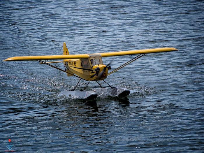 Piper Cub on Floats.jpg