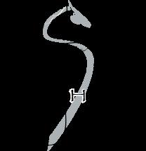 silver-horse-winery-SilverHorse_Vinelogo.png
