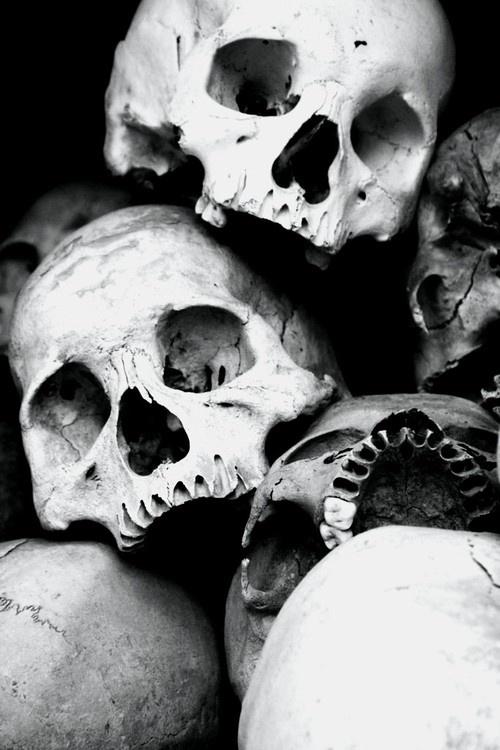 skulls b&w.jpg