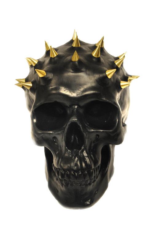 Lauren Baker - Human Skull
