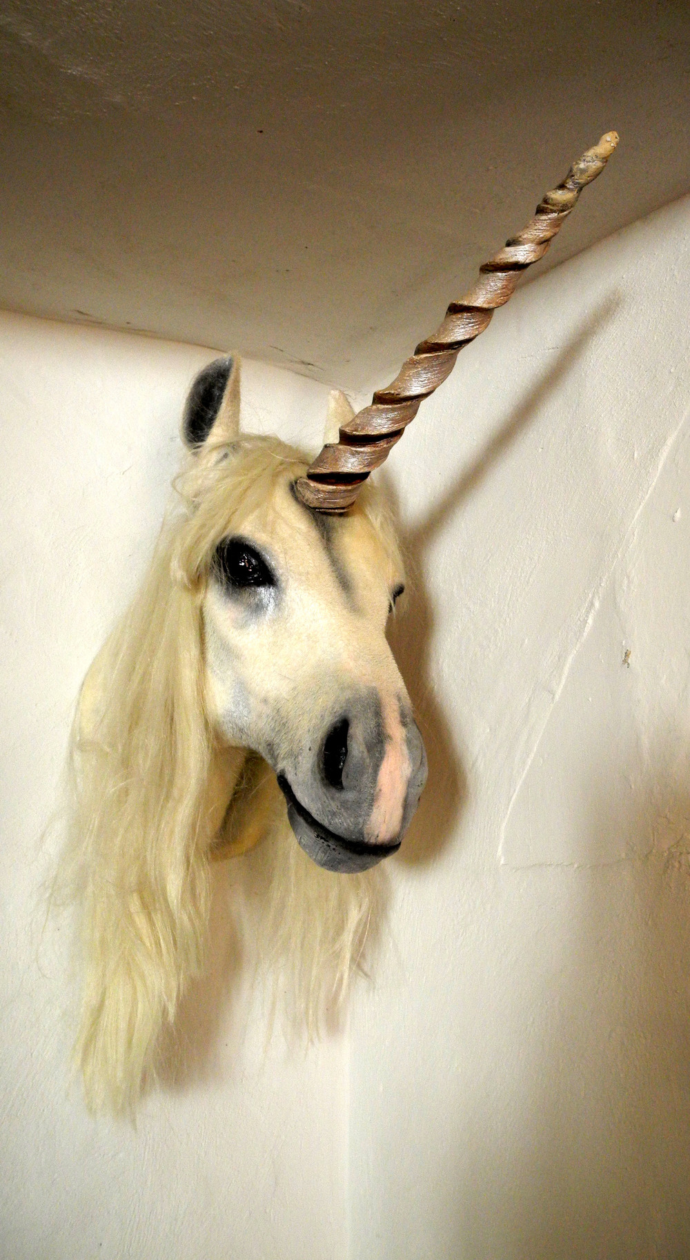 Surely every venue has a unicorn head??  The fabulous 3 Swans pub in Frome.