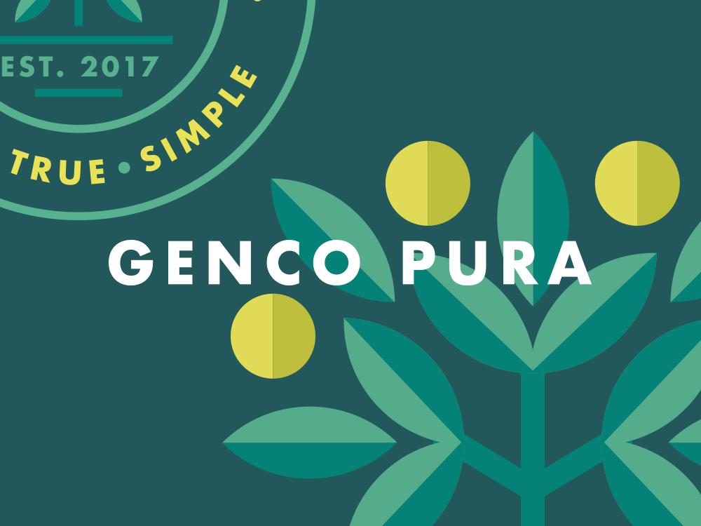 The-Creative-Canopy_Genco-Pura-COVER3.jpg