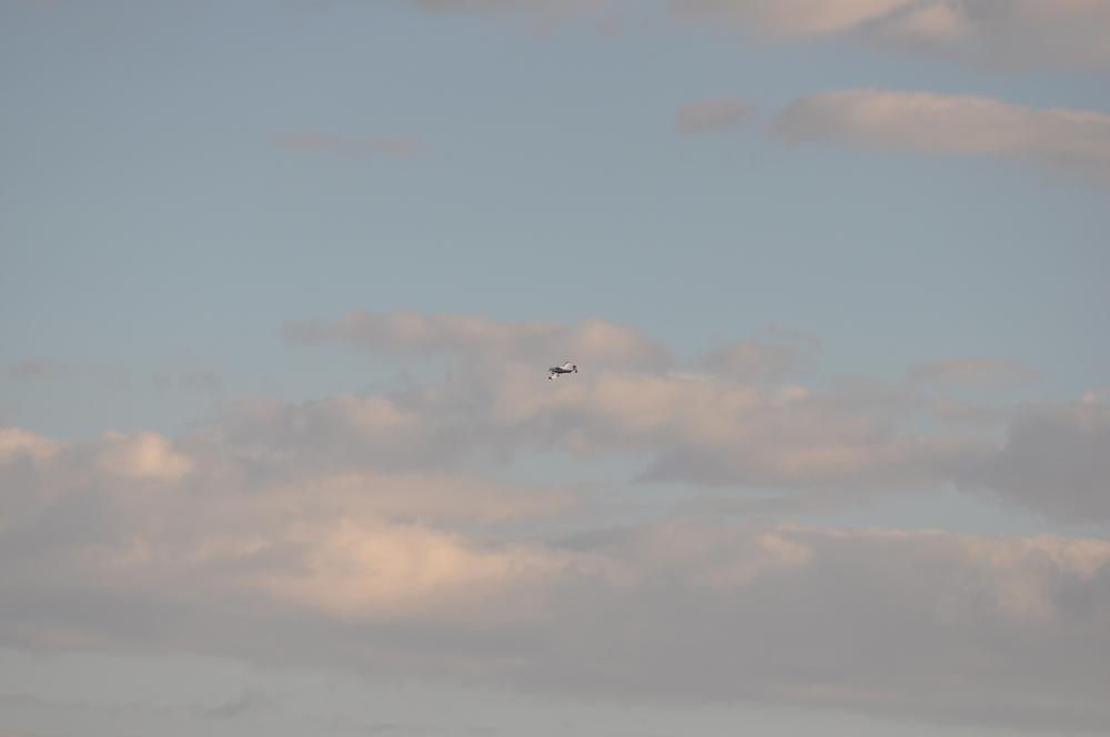 First Flight Pics 030.JPG