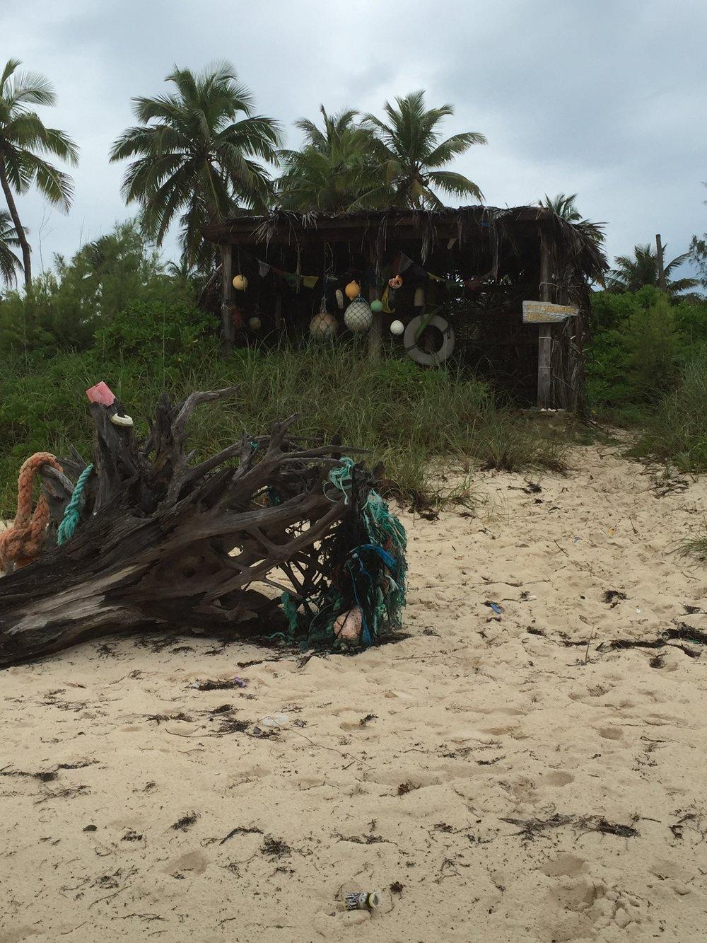 Bahamas 2016 (421).jpg