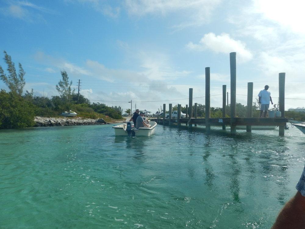 Bahamas 2016 (728).jpg