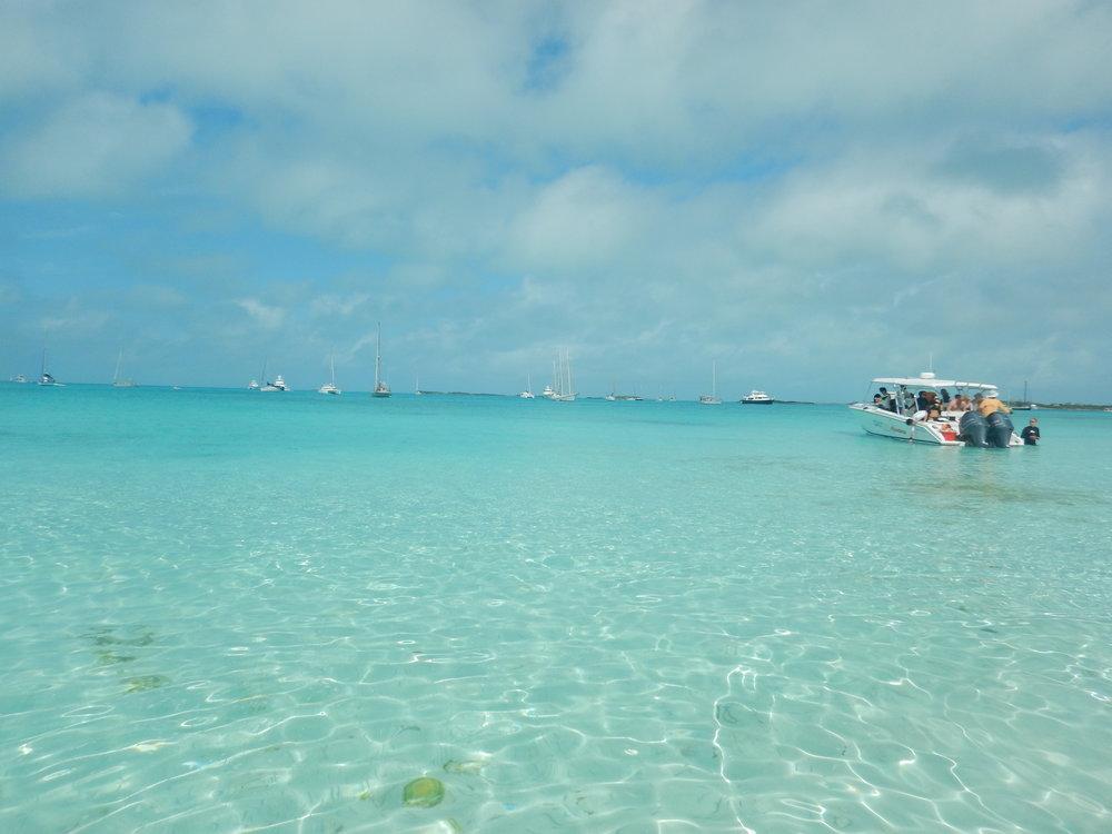 Bahamas 2016 (763).jpg
