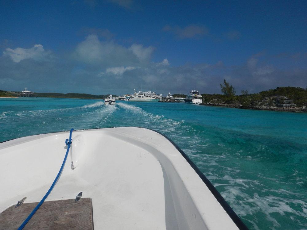 Bahamas 2016 (765).jpg