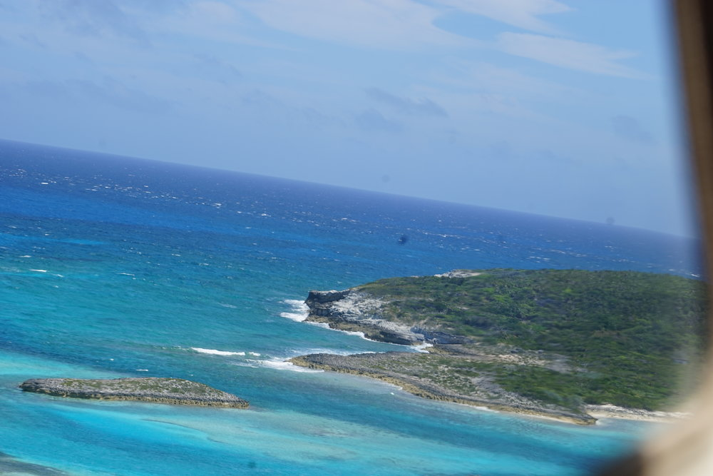 Bahamas 2016 (880).jpg