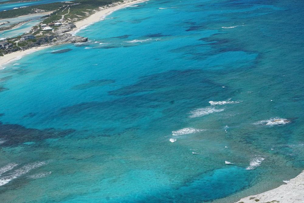 Bahamas 2016 (882).jpg