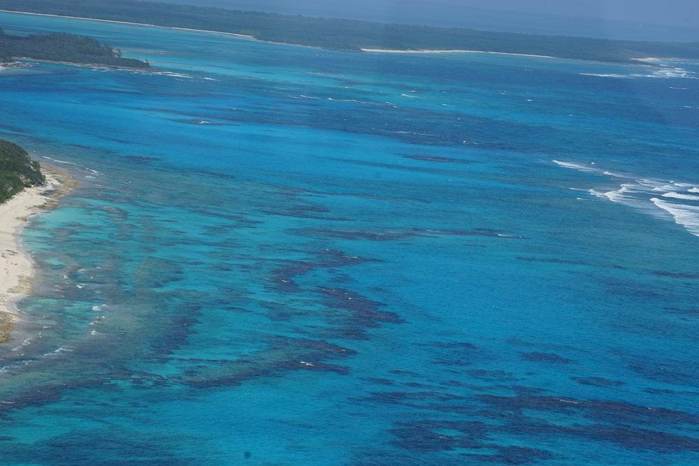 Bahamas 2016 (893).jpg