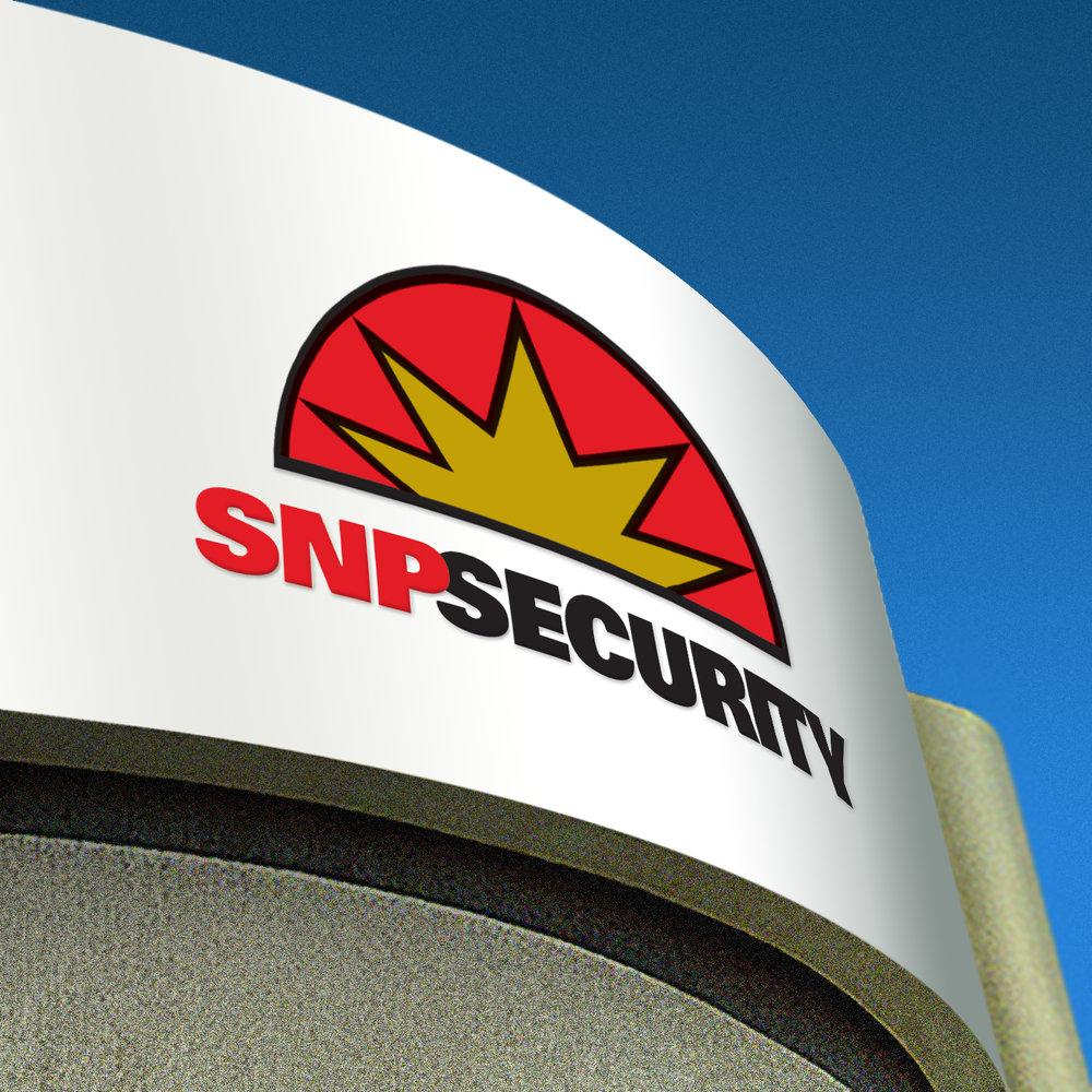 SNP2.jpg