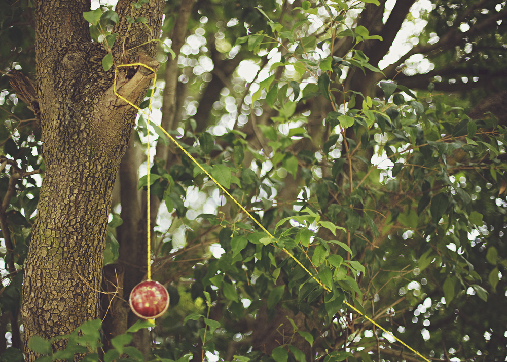 Unfortunately a tree branch kept getting in the way of Toby's cricket ball on a string while he was practicing his batting!