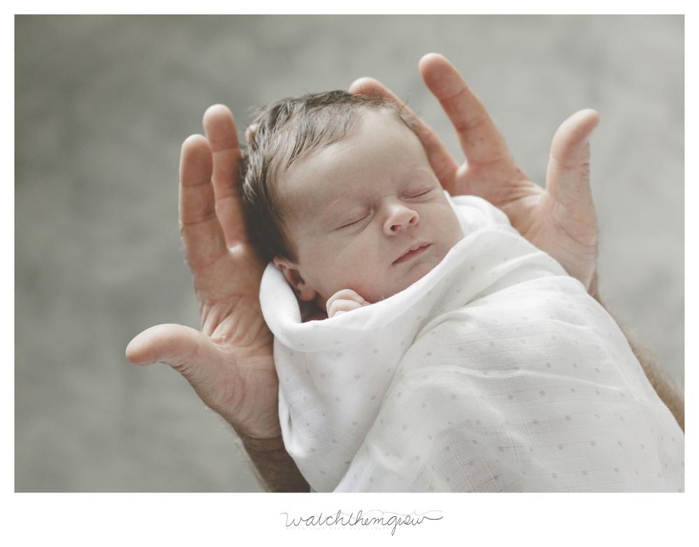 Newborn baby girl in Daddy's hands