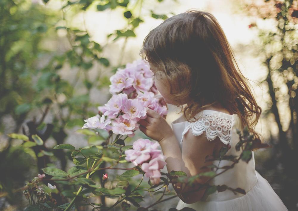 Sweet little girl smelling roses!
