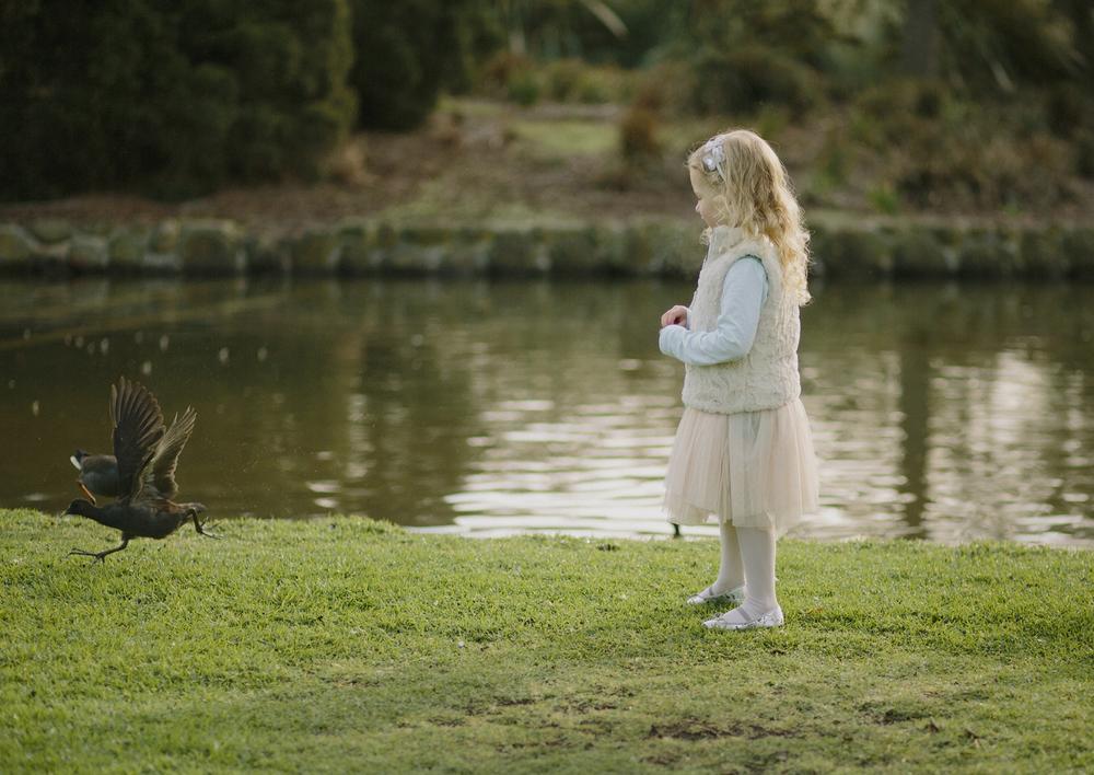Child feeding the ducks!