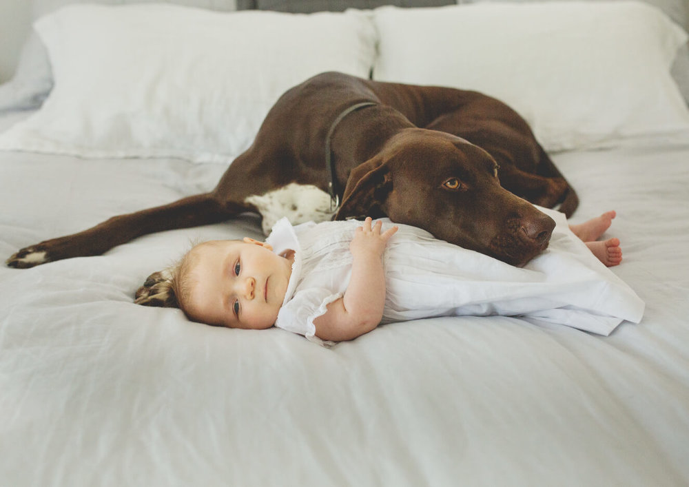 Baby girl's protector!