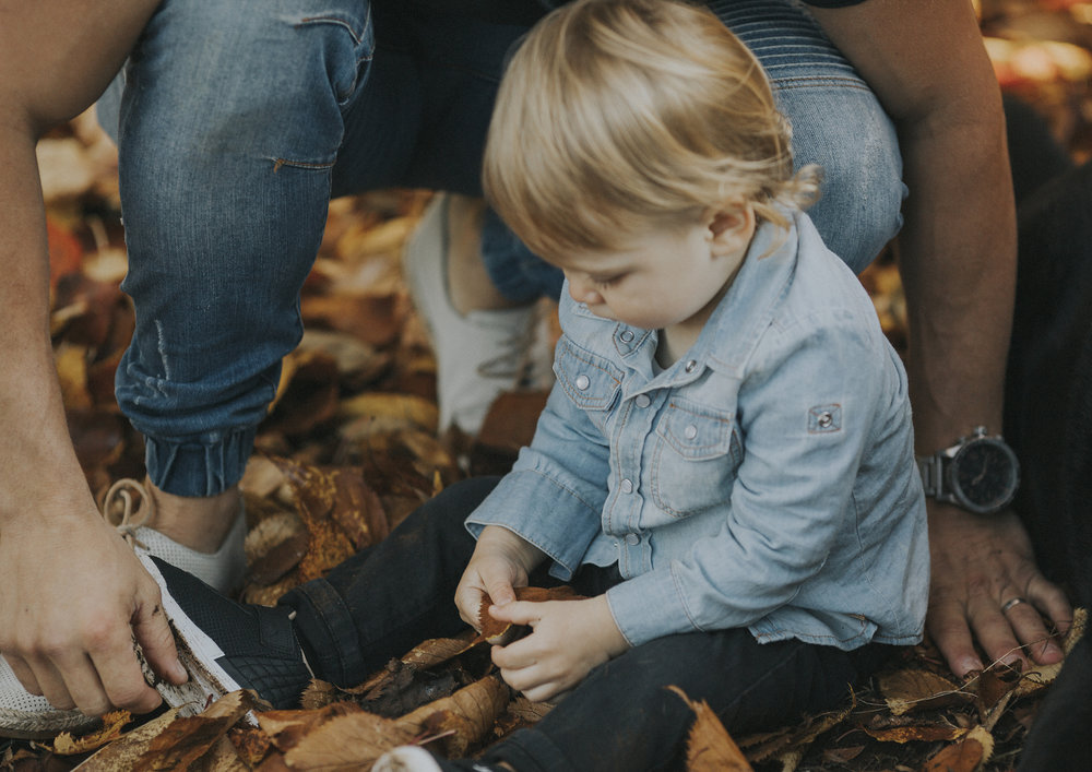 Toddler playing with the Autumn leaves