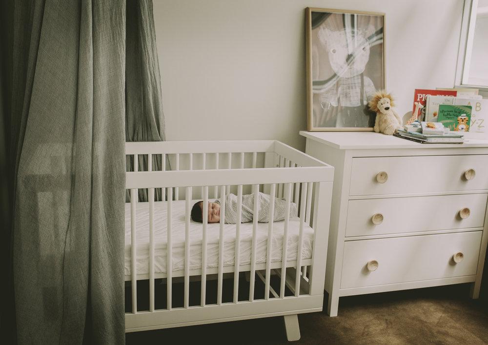 Newborn Baby Boy's Nursery