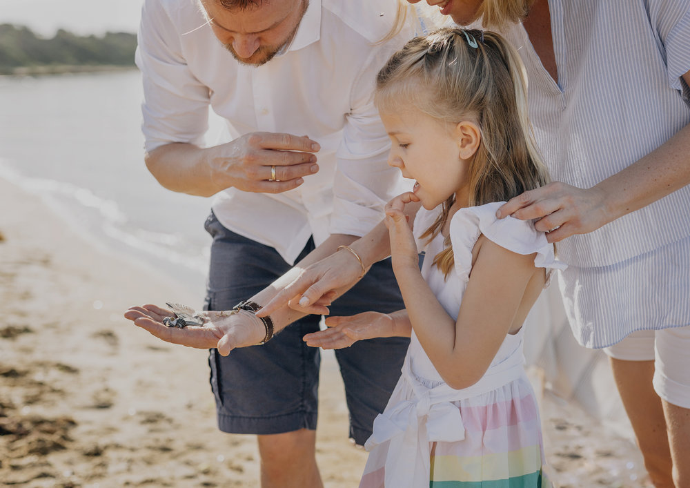 Family looking at seashells at the beach