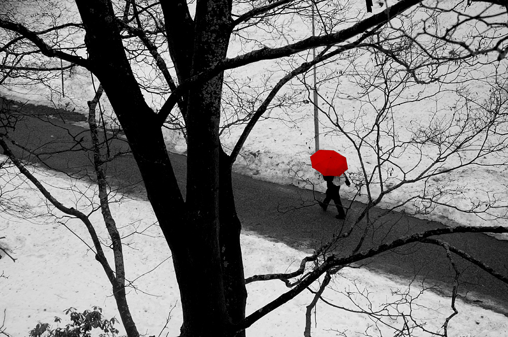 "Photo credit to:   ""Umbrella Man"" by Mikko Luntiala"