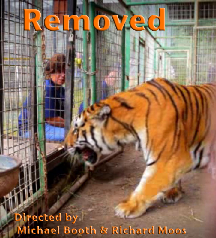 Removed      Best Short Documentary