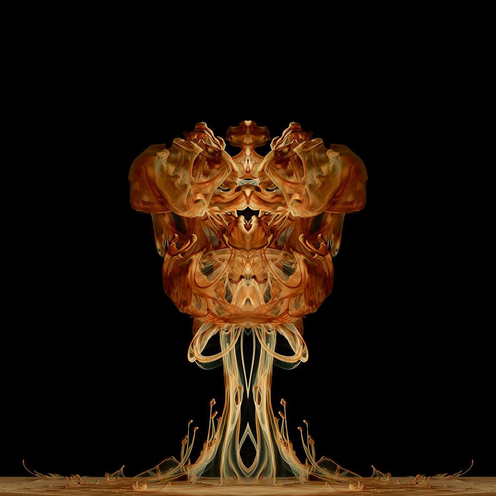 fungi-esquilini.jpg