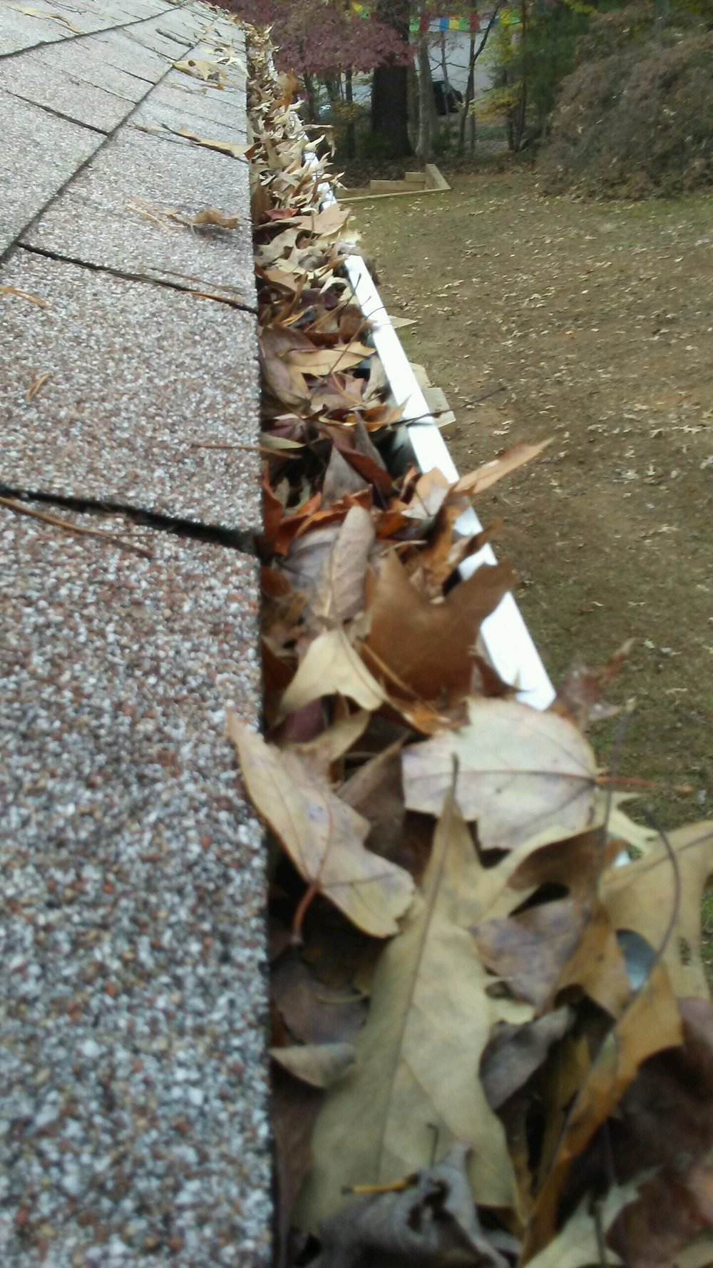 Image of a gutter full of leaves and debris in Charlottesville VA