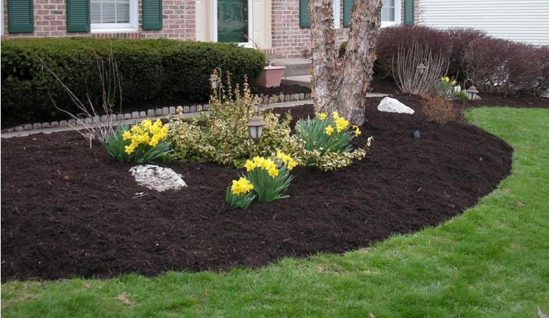 Need Fresh Mulch? - We do full bed prep including edging and weeding before we spread mulch.
