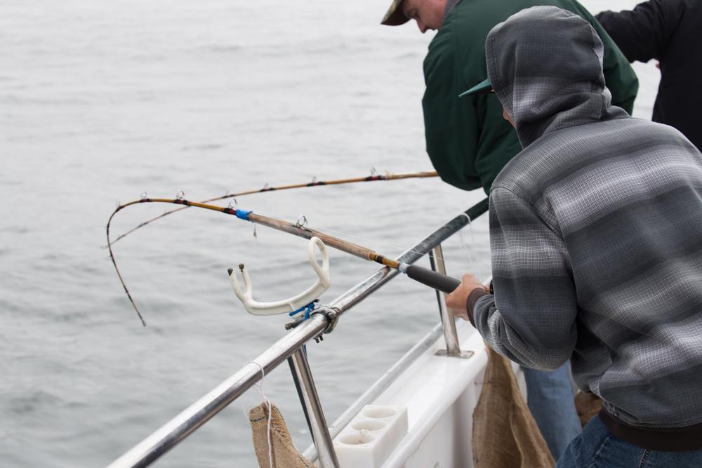 Fishing-46.jpg