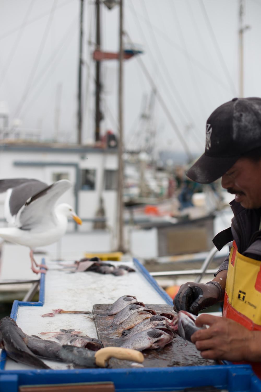 Fishing-105.jpg