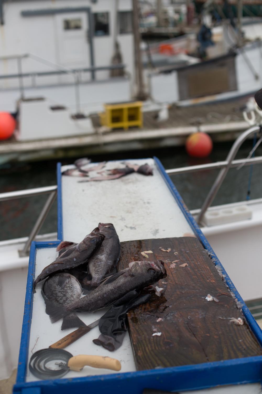 Fishing-112.jpg
