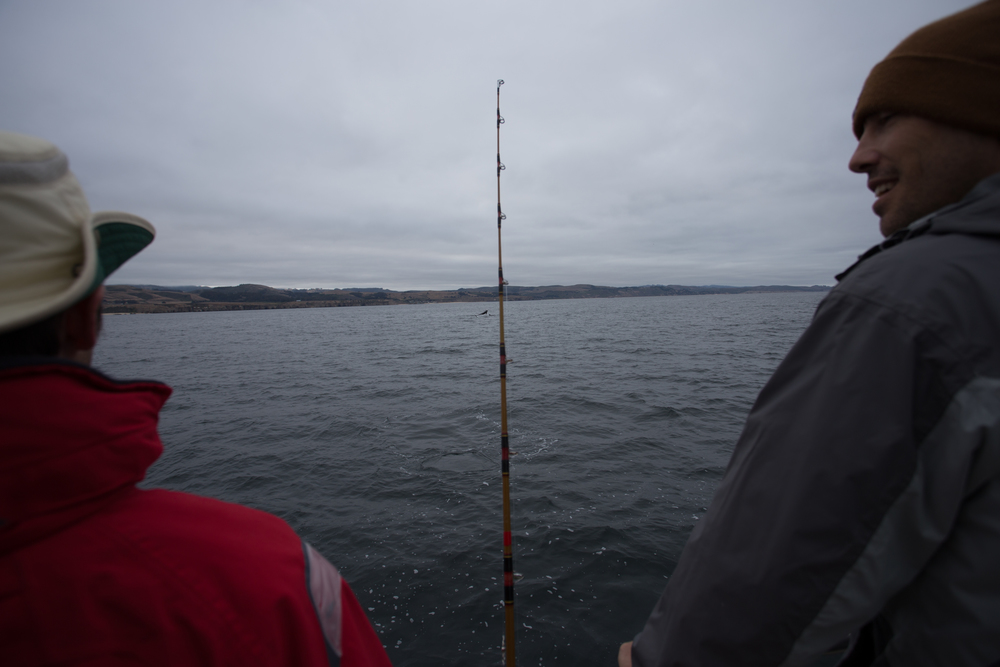 Fishing-29.JPG