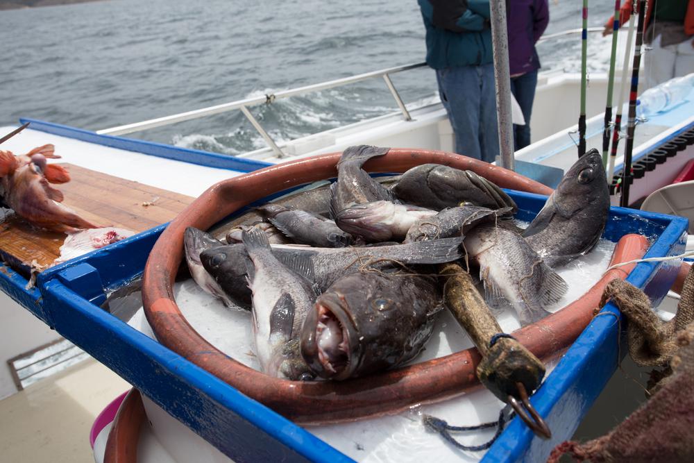 Fishing-158.JPG
