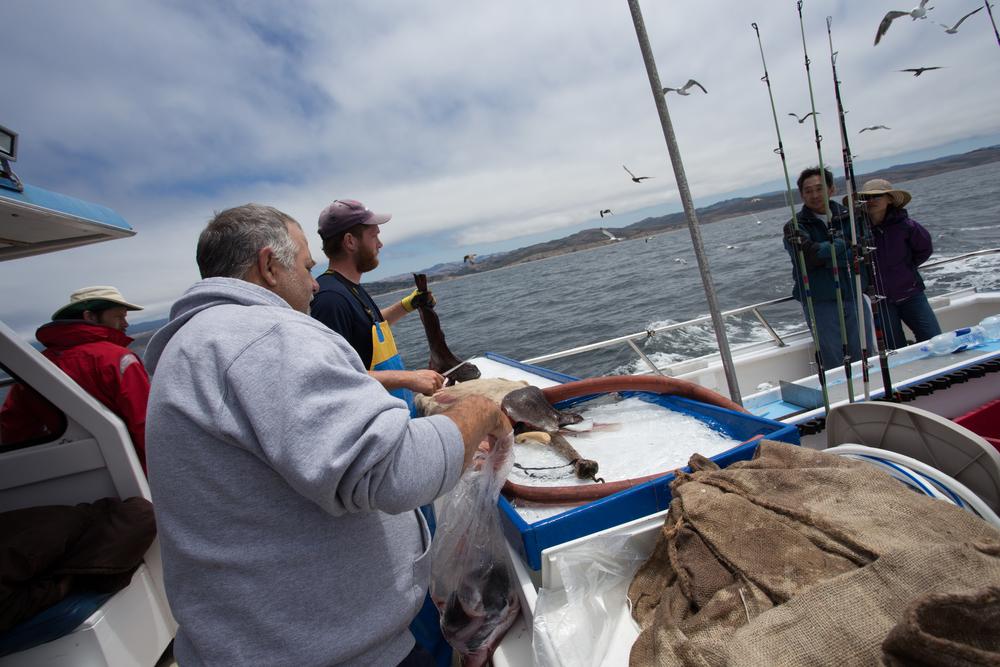 Fishing-169.JPG