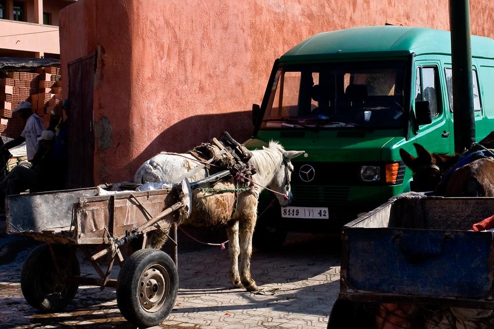 Morocco-201.jpg