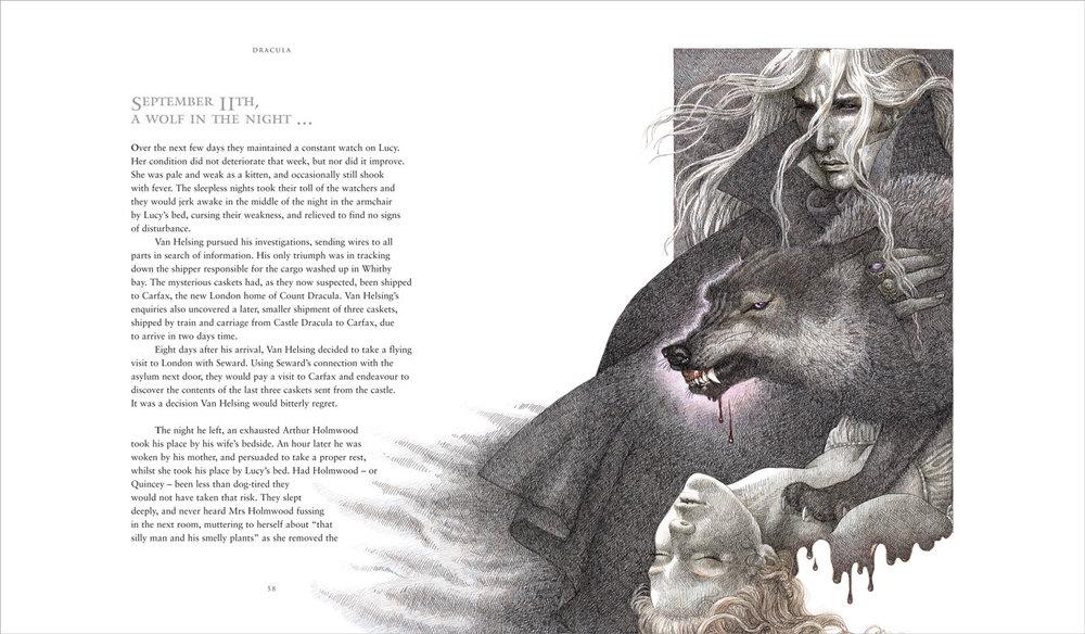 Dracula (Grey Wolf)