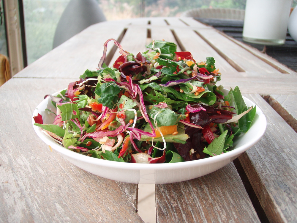 Salad Should Be The Main Course Twice Per Day