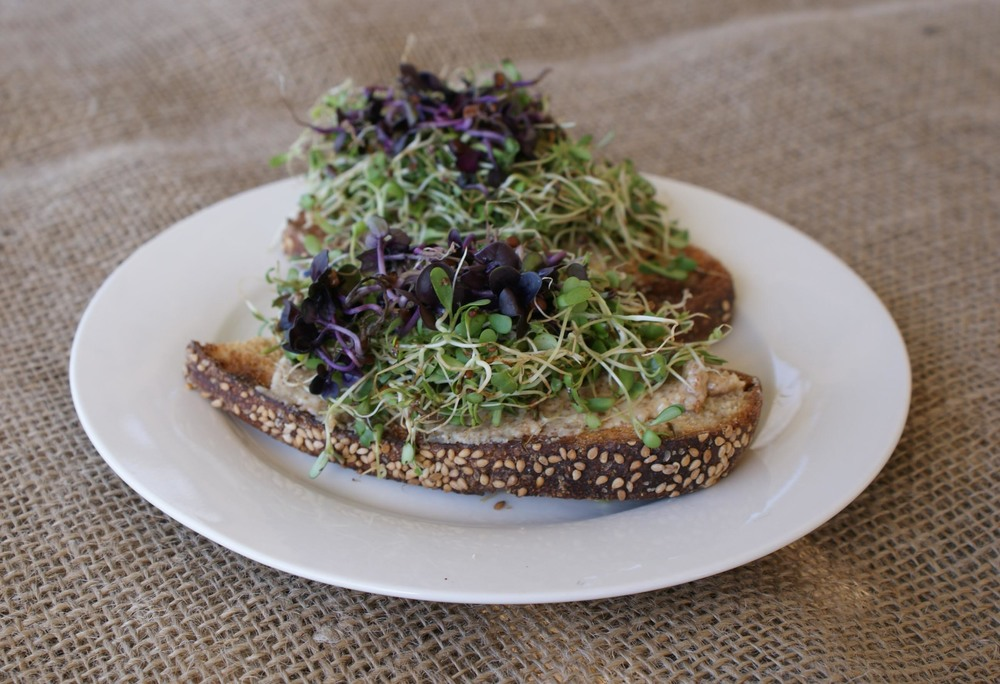 sprouts are rich in nutrients