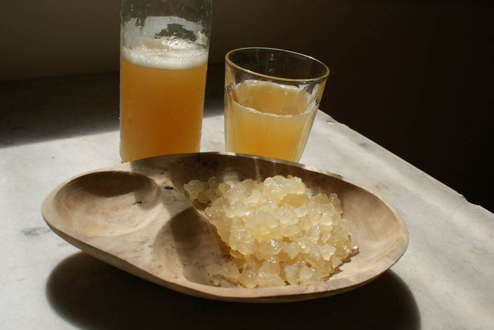 Probiotic Sparkling Vinegar Drink with B vitamins Water Kefir & Kombucha Are Good For You