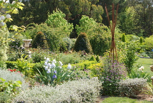 GARDEN AT PICCADILLY, SOUTH AUSTRALIA, AS SEEN ON TODAY TONIGHT CHANNEL 7 & SA GARDENS MAGAZINE